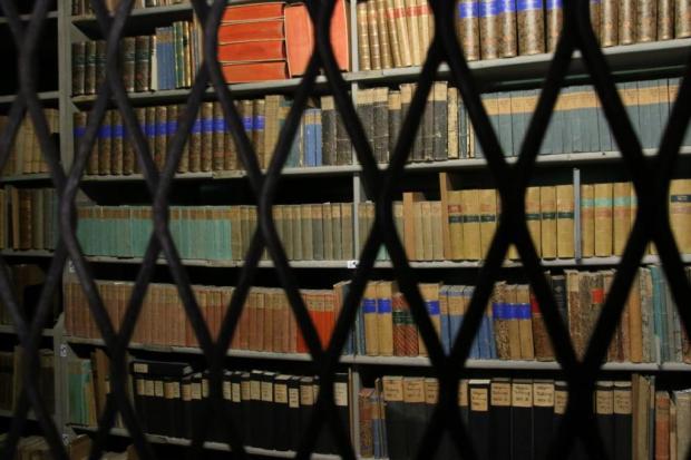 Durch ein rhombenförmiges Metallgitter wird auf eine Wand voller alter Bücher geschaut.